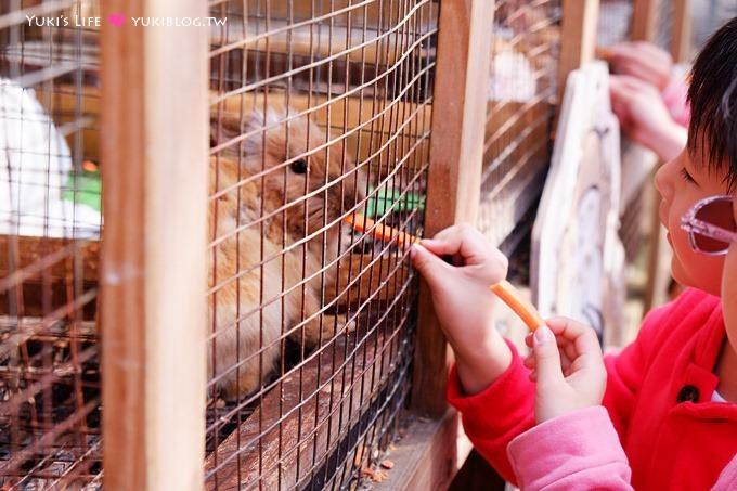 桃園觀音景點【青林農場】便宜門票、有沙坑、小火車、餵兔子的親子旅遊地點 - yukiblog.tw