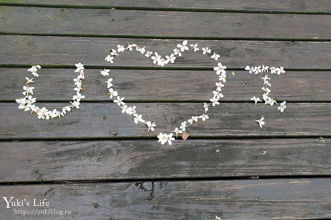 苗栗親子景點【苗栗西湖渡假村】森林冒險遊樂園暢玩一整天×省錢攻略(賞桐賞螢景點) - yukiblog.tw