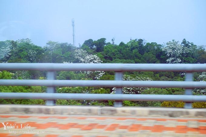 苗栗景點【九華山天空步道】銅鑼油桐花景點×親子旅遊一日遊行程規劃 - yukiblog.tw