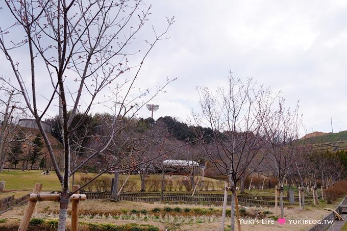 大阪旅遊【富田林市農業公園Savor Farm】採草莓.看花海.燒烤BBQ的親子行程 - yukiblog.tw