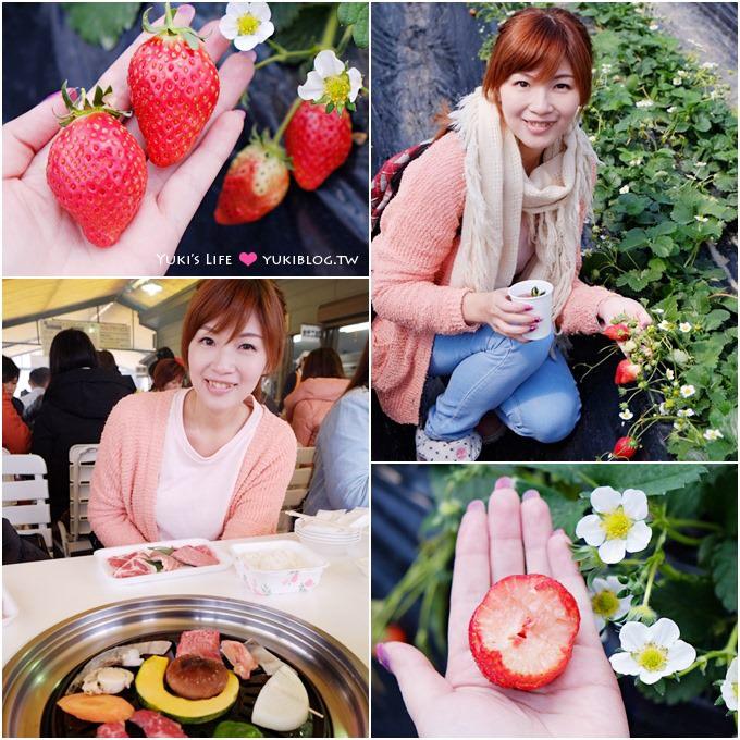 大阪旅遊【富田林市農業公園Savor Farm】採草莓.看花海.燒烤BBQ的親子行程