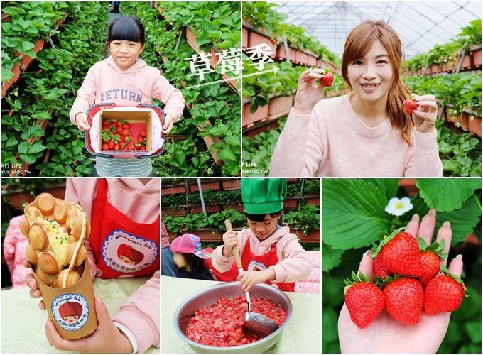 台北親子景點【內湖草莓園49號】草莓果醬雞蛋仔DIY×免淋雨採草莓~假日約會好去處!