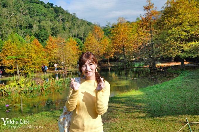 苗栗景点《南庄云水度假森林》落羽松踏青好去处×水池花园、泡汤美食亲子景点