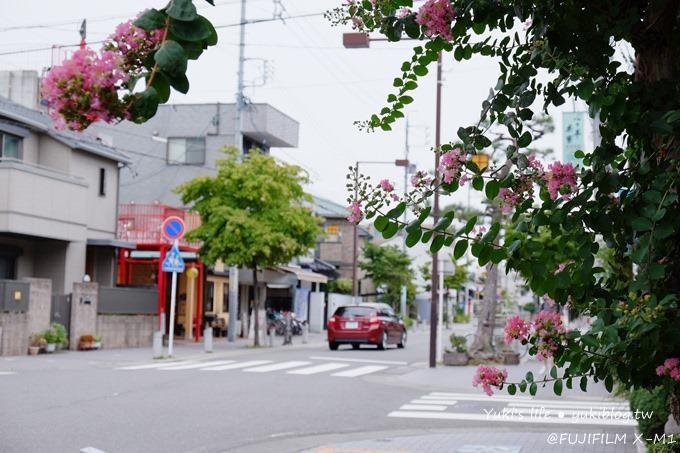 【開箱文】FUJIFILM X-M1‧經典好機.就愛富士color ❤(搭配18-55含實拍照.圖多) - yukiblog.tw