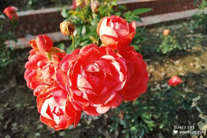 台北免費親子景點【士林官邸公園】玫瑰花園開好開滿×約會拍照下午茶好去處(捷運士林站) - yukiblog.tw
