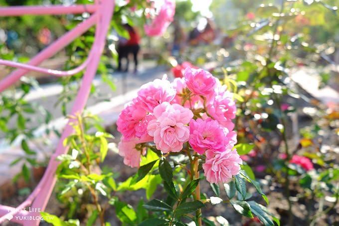 台北免費親子景點【士林官邸公園】玫瑰花園開好開滿×約會拍照下午茶好去處(捷運士林站)   Yukis Life by yukiblog.tw