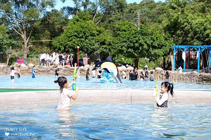 新北烤肉玩水好去處【淡江農場】礦泉游泳池×戲水池~大人小孩都玩翻了!(淡水景點)
