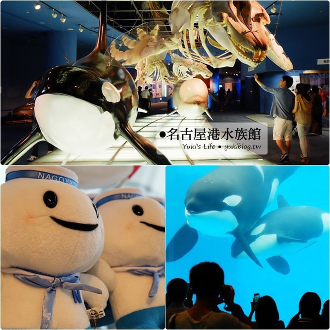 日本名古屋景點〈名古屋港水族館〉虎鯨寶寶.海豚表演超可愛❤