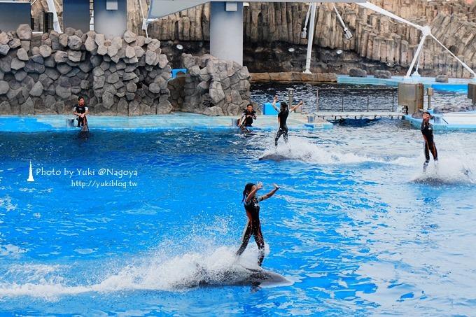 日本名古屋景點〈名古屋港水族館〉虎鯨寶寶.海豚表演超可愛❤ - yukiblog.tw