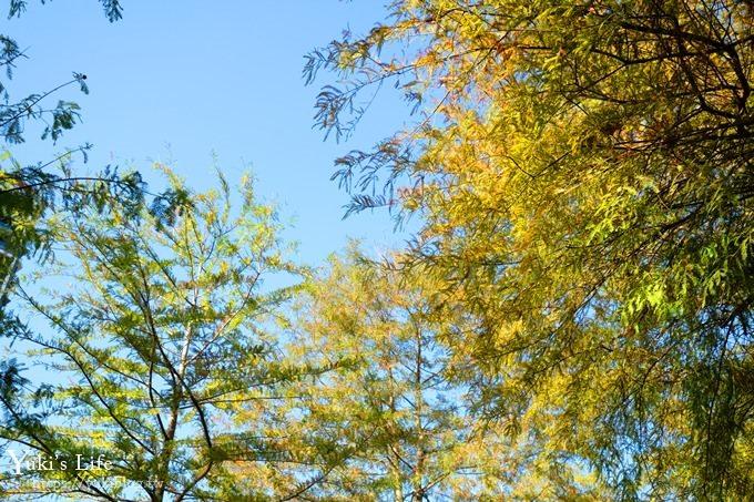 宜蘭新景點《蜂巢基地兒童遊樂場》土堤滑梯×沙坑×落羽松秘境(頭城運動公園) - yukiblog.tw