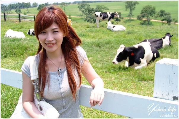 [台東-遊]*初鹿牧場~鮮奶好好喝.哞哞哞 - yukiblog.tw