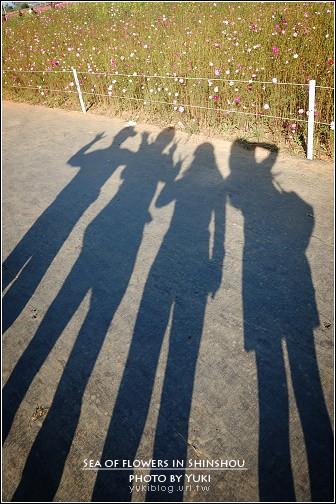 [台中-玩]*08新社花海 ~ 一家四口趴趴走 - yukiblog.tw