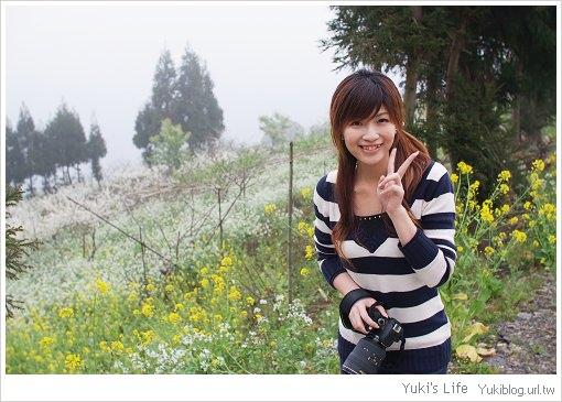 [玩-桃園]私の景點-北橫高義村 (上)仙境般的世外桃園 - yukiblog.tw