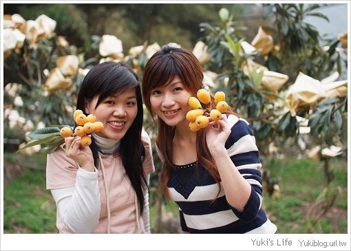 [玩-桃園]私の景點-北橫高義村 (下)枇杷盛產.香甜飽滿 - yukiblog.tw